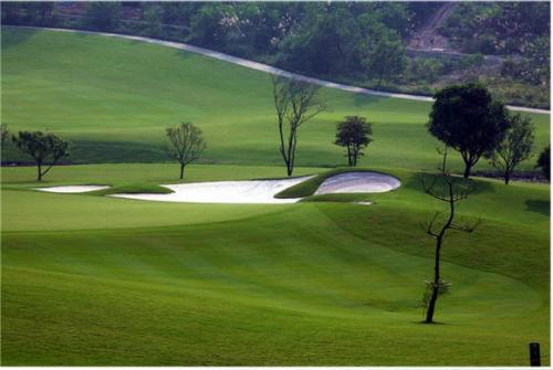 Vietnam Golf Classic