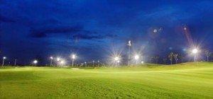트윈 비둘기 골프 클럽
